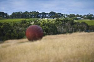 Estate to Plate Montalto Vineyard Gourmet Lunch and Wine-Tasting Tour - Accommodation Main Beach