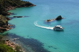 Cape Woolamai Sightseeing Cruise from San Remo - Accommodation Main Beach