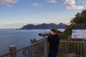 4x4 and Lunch Half Day Freycinet National Park - Accommodation Main Beach