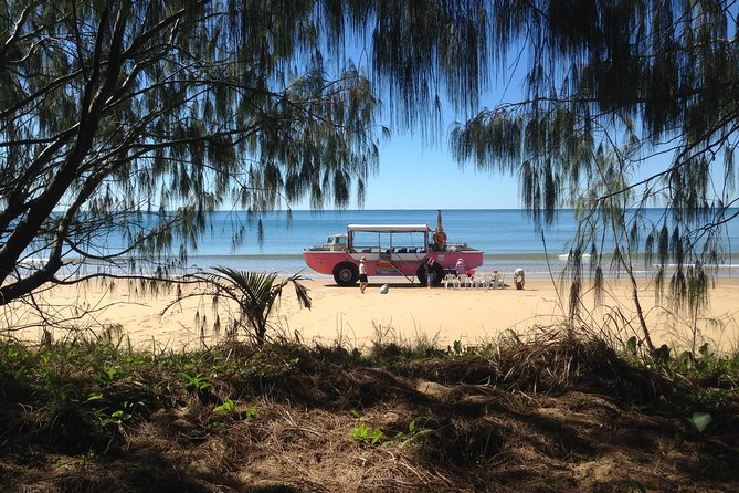 1770 Coastline Tour by LARC Amphibious Vehicle Including Picnic Lunch - Accommodation Main Beach