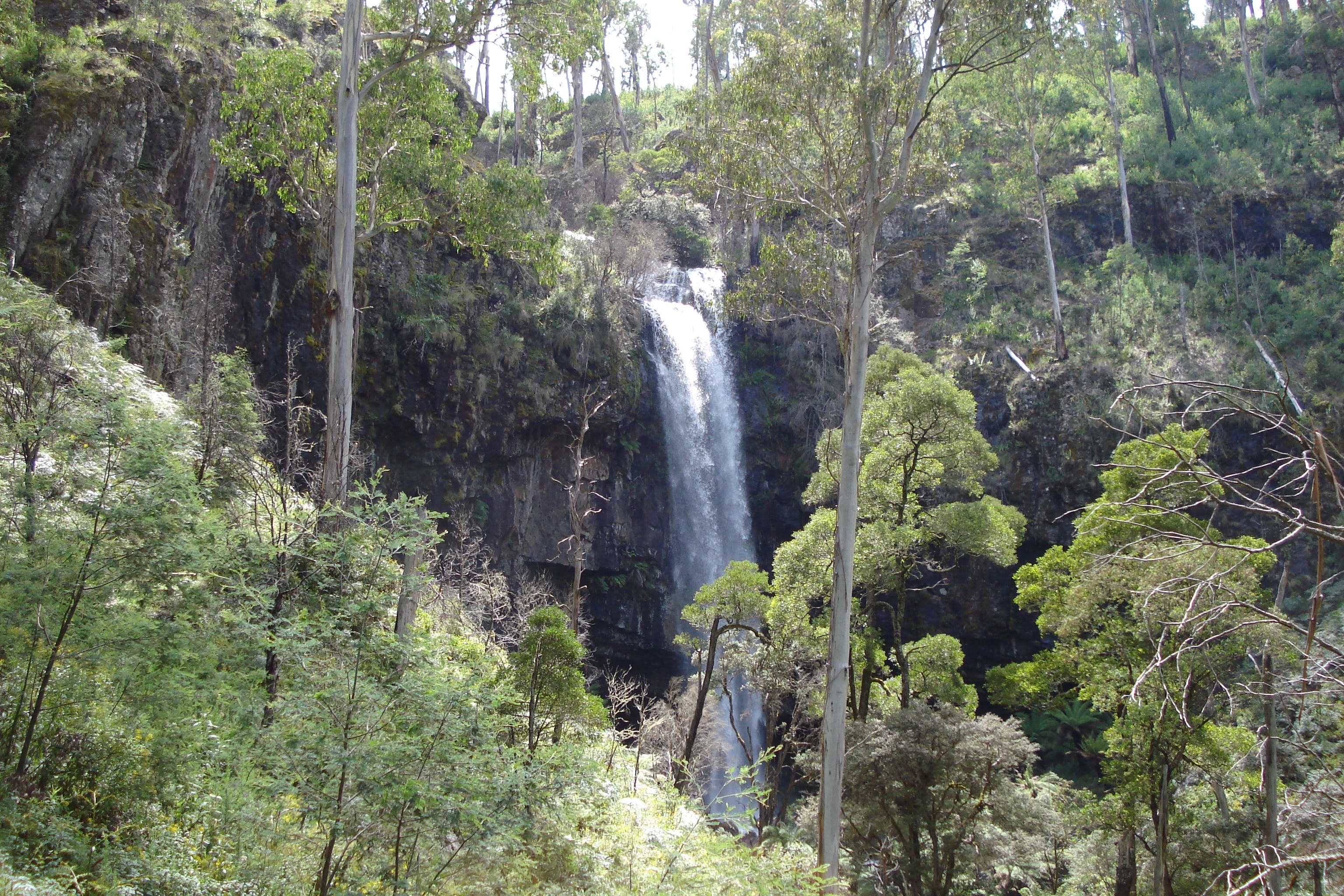Bindaree Falls - Accommodation Main Beach