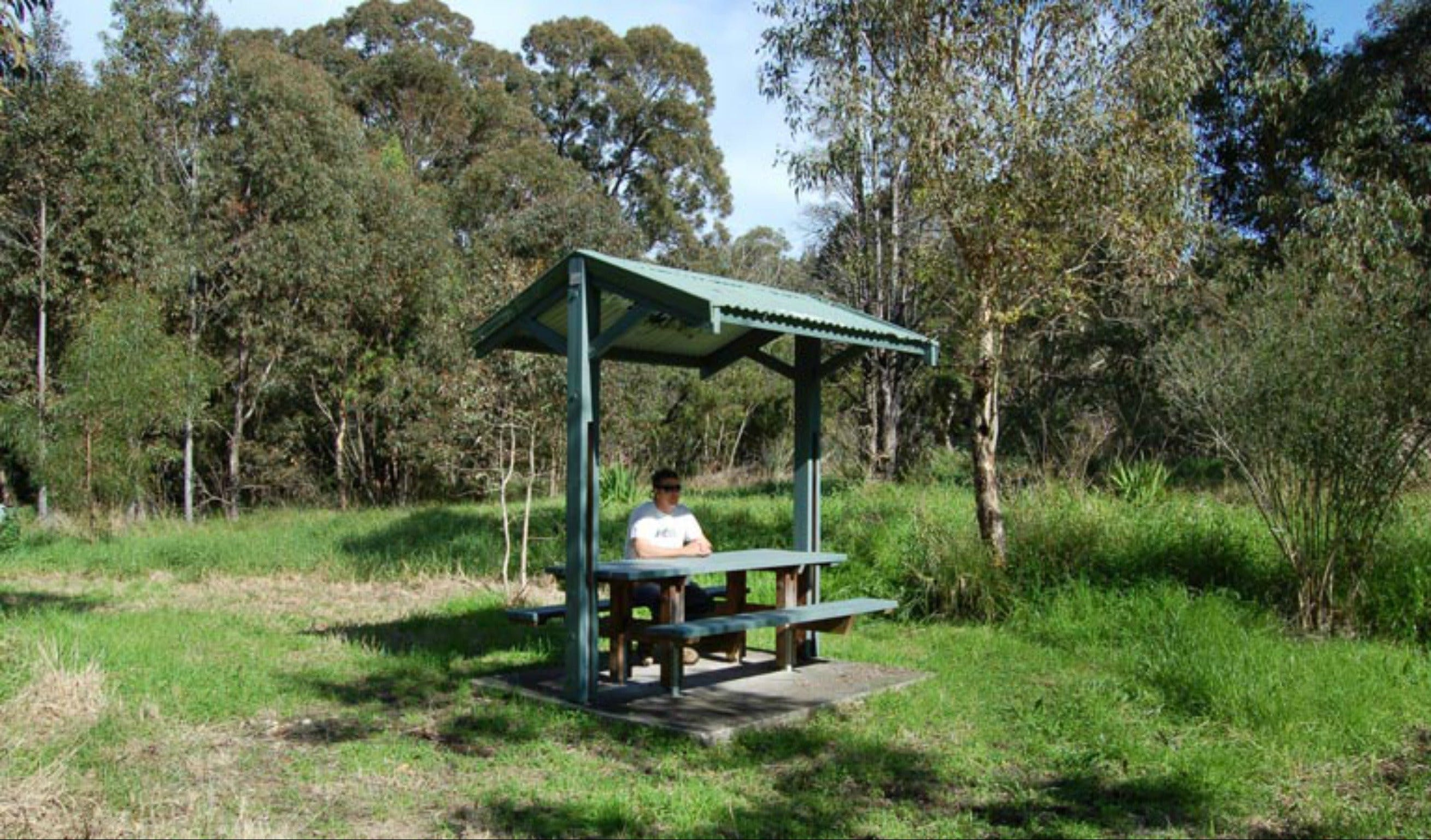 Alexanders picnic area - Accommodation Main Beach