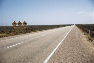 Eyre Highway - Accommodation Main Beach