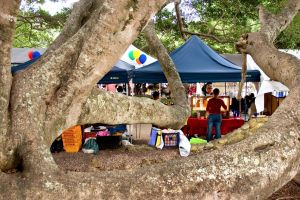 Eumundi - Accommodation Main Beach