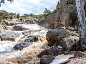 Mannum Waterfalls - Accommodation Main Beach
