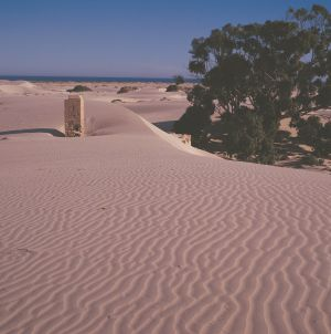 Nullarbor Plain - Accommodation Main Beach