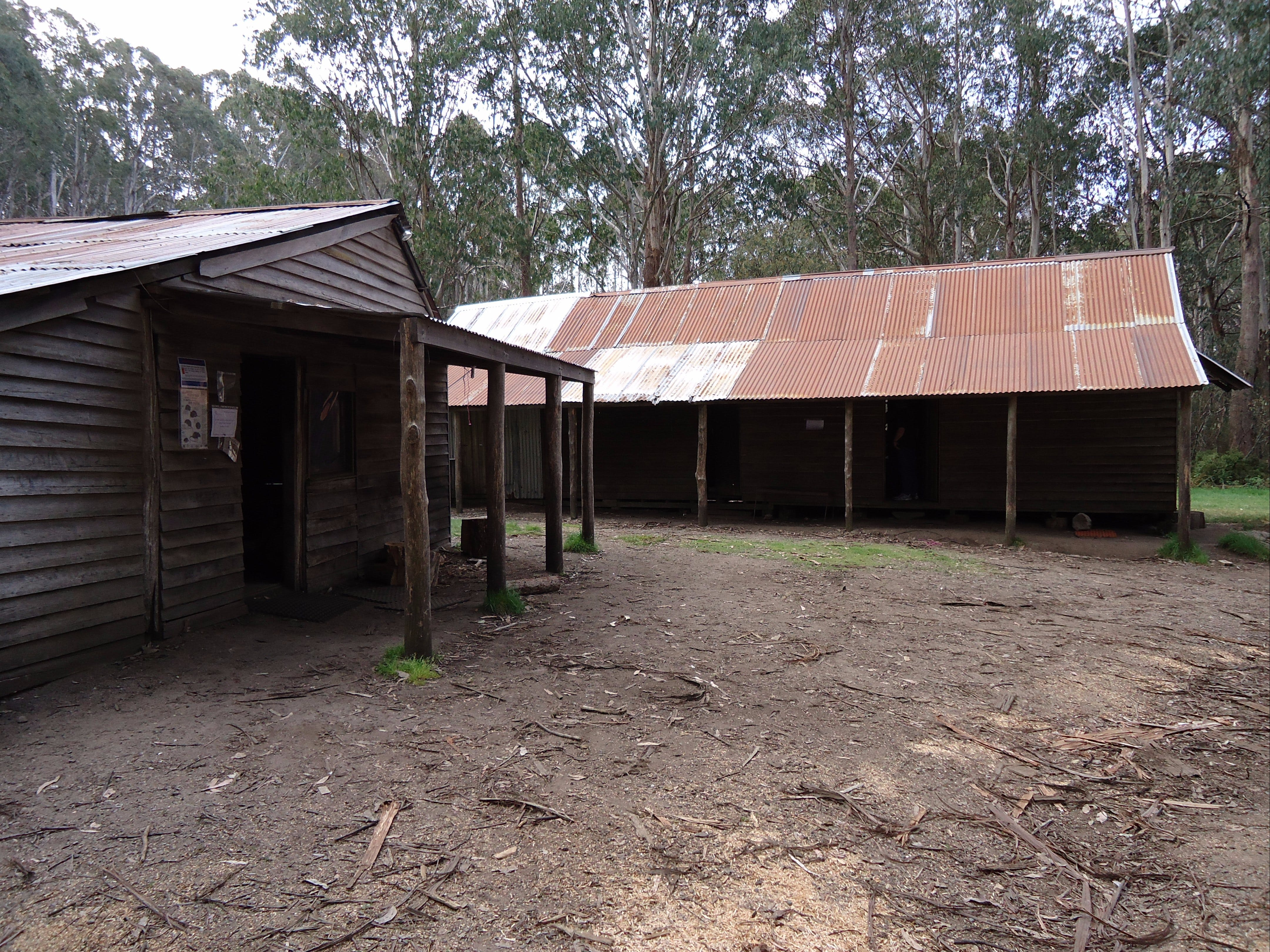 Razorback Hut - Accommodation Main Beach