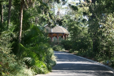 Royal Botanic Gardens Victoria - Accommodation Main Beach