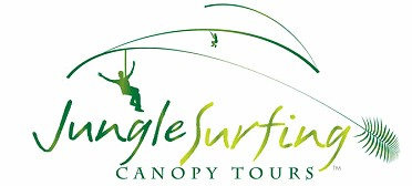 Jungle Surfing Canopy Tours and Jungle Adventures Nightwalks - Accommodation Main Beach