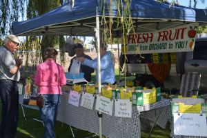 Corowa Rotary Federation Festival Market - Accommodation Main Beach